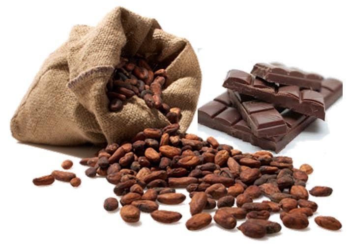 imagen-chocolate-y-cacao-cddldm1bcmpuajixnglesc8vmtqzoda3mje3os8